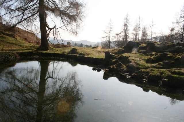 A tarn in the Lake District, close to Rydal Water
