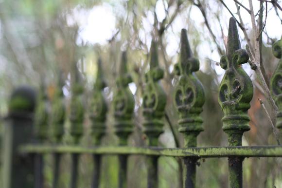 Fence on walk to Botanic Garden
