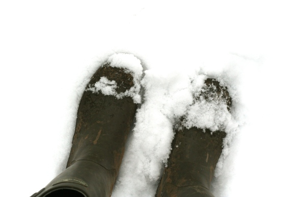 Snowy wellies