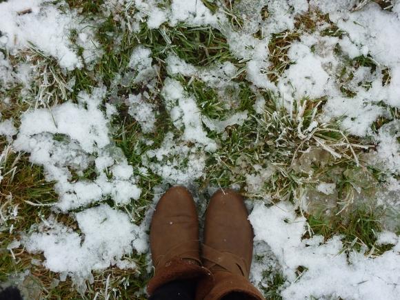 snow underfoot