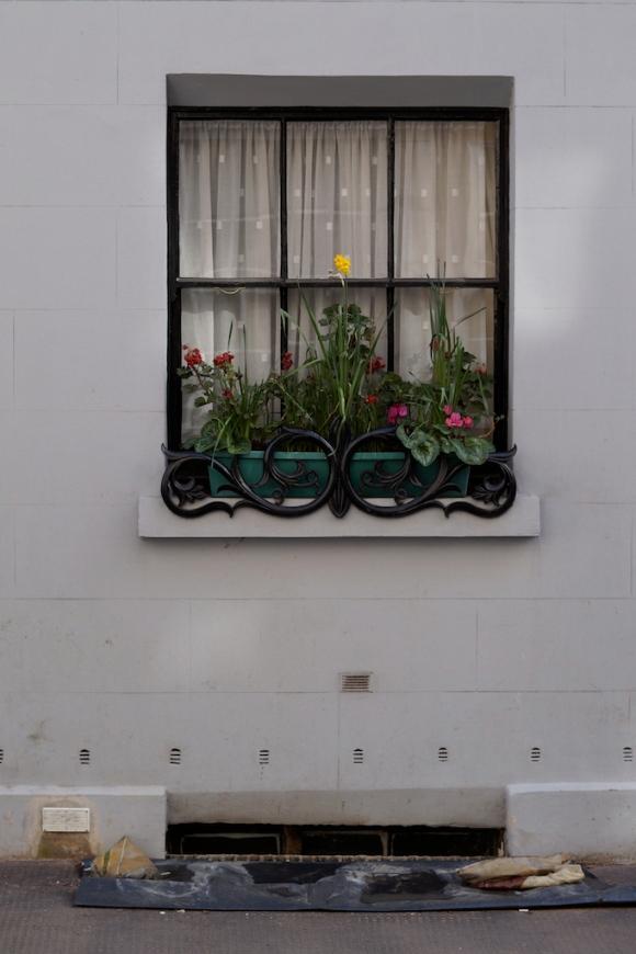 window scene