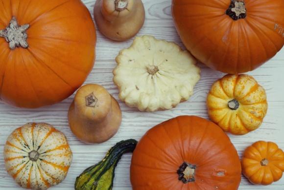 love an ornamental gourd